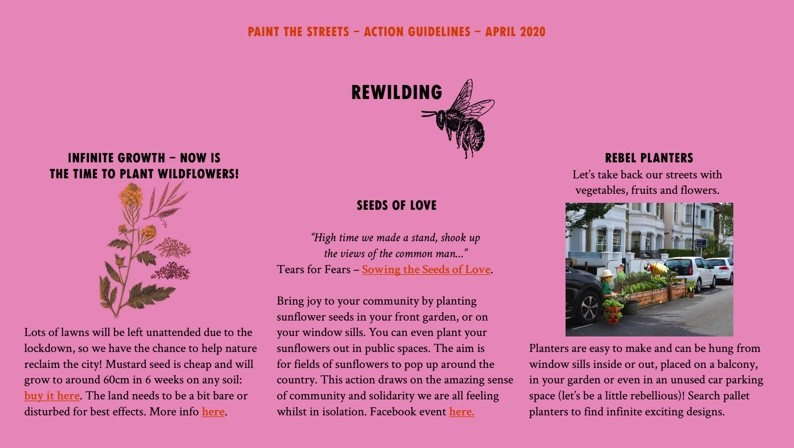 Rewilding image - the page continues below