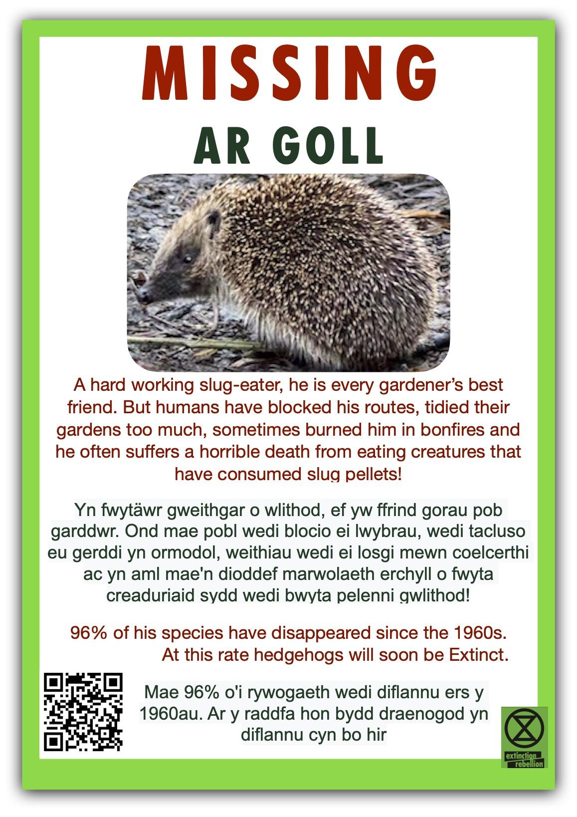 Hedgehog-poster-bi-lingual-jpeg.jpg