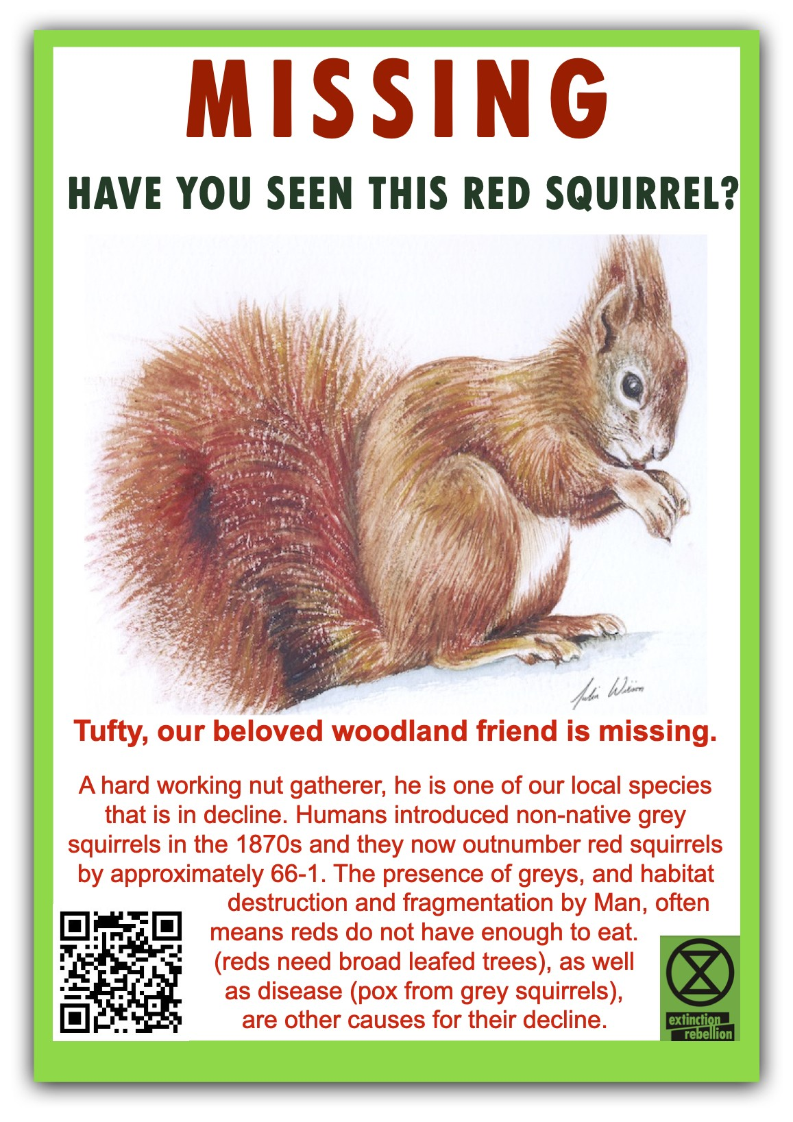 Missing--Red-Squrrel-English-jpeg.jpg