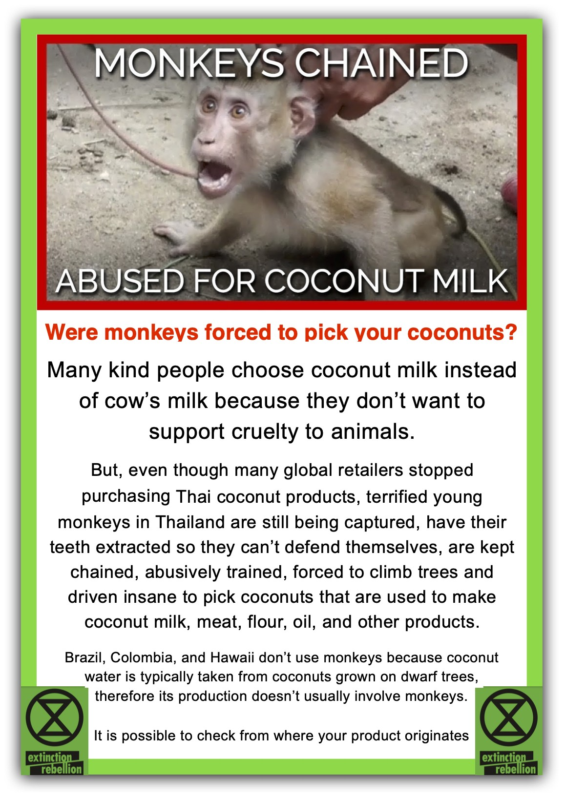 Monkeys-abused-in-coconut-industry-jpeg.jpg